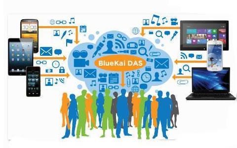 数据管理平台DMP细致研究——BlueKai