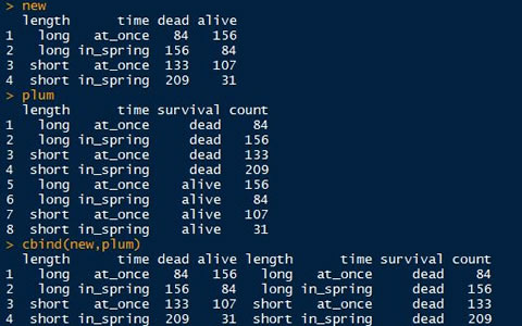 用R语言进行数据分析:命令行编辑器