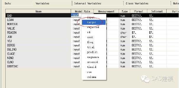 SAS-EM 决策树操作案例