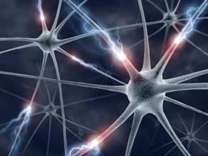 如何简单形象地解释神经网络?