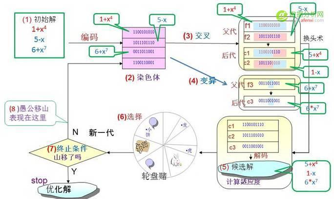 达尔文、孟德尔与老愚公的会盟:基因表达式编程--趣味数据挖之十
