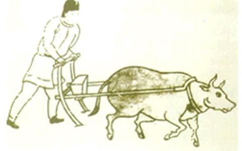 """如何在数据农耕时代做个好""""数农""""?"""