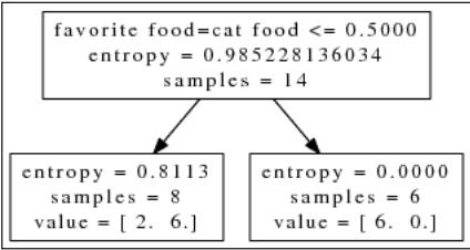 entropycatfood