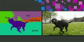 深度学习座下的四大神兽:计算能力、算法、数据、应用场景