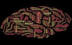 干货分享|深度学习零基础进阶第三弹-数据分析网