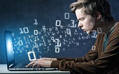 新程序员最喜欢的 6 种岗位-数据分析网