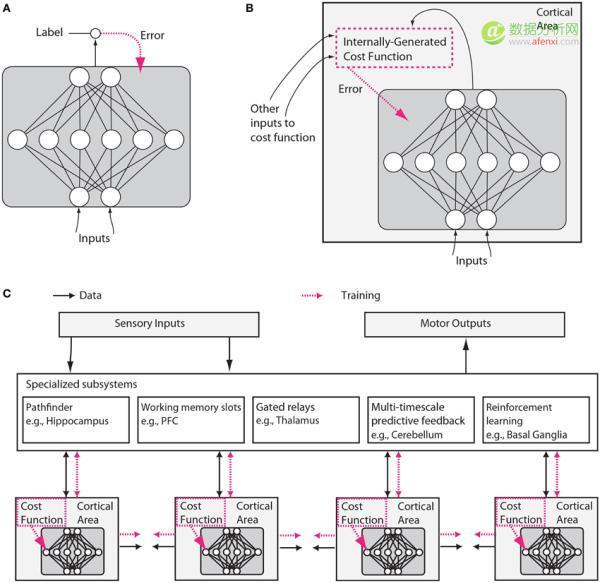 机器学习和神经科学:你的大脑也在进行深度学习吗?