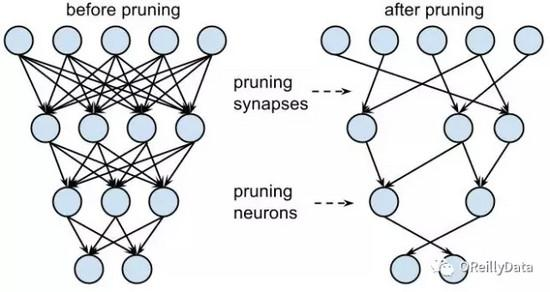 深度神经网络的压缩和正则化