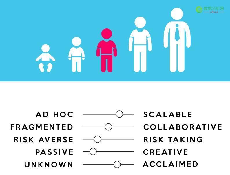 如何零基础打造高效的数据团队?