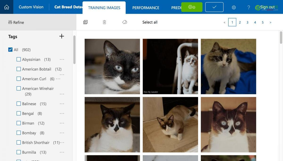 猫奴的自我修养,教你如何用机器学习识别猫的品种