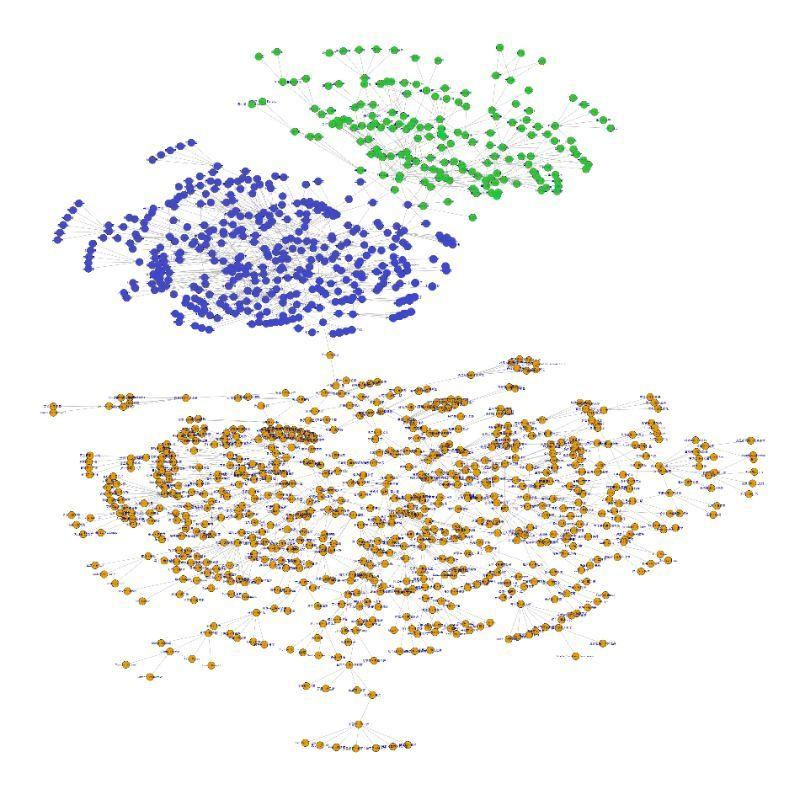 从Erdos数谈网络数据特征