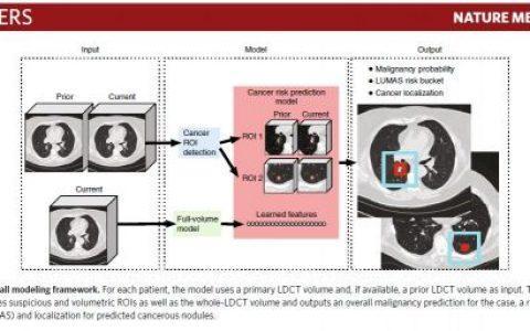 谷歌再推人工智能早期肺癌检测系统,准确率94%