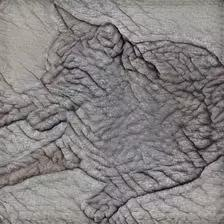 颠覆常识!深度神经网络并不是通过形状来识别物体的
