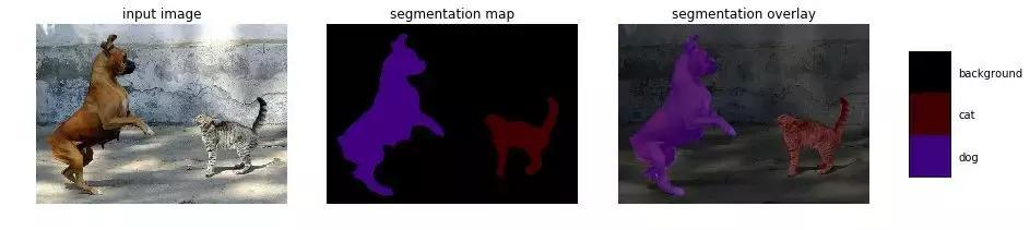 10个预训练模型开始你的深度学习(计算机视觉部分)