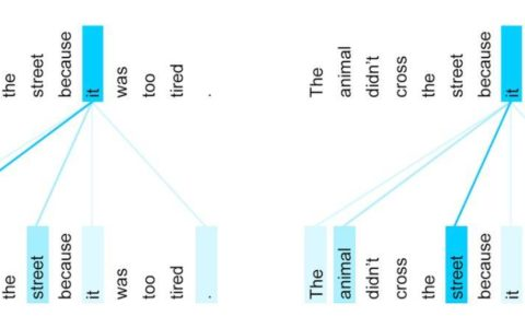 Kaggle最流行NLP方法演化史,从词袋到Transformer