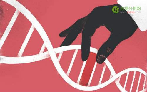 做ASM,人工投放还是智能投放?公司的基因很重要!
